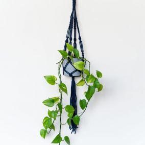 Macrame Plant Hanger Craft Kit
