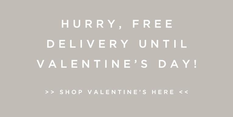 Valentines day offer